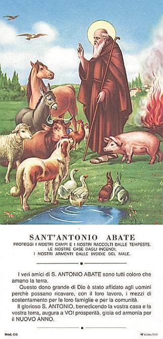 Cartoncino S. Antonio Abate (100 pz)